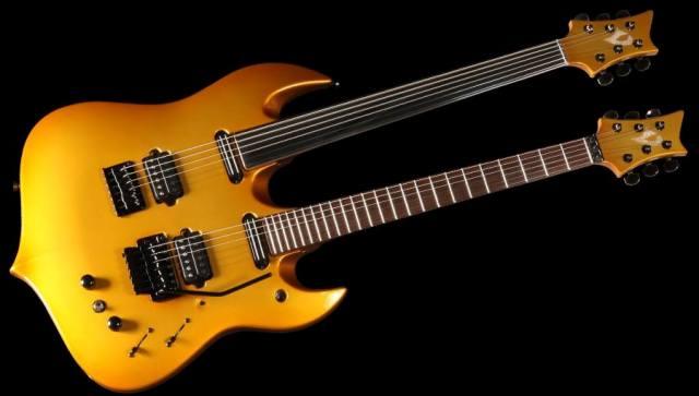 guitare vigier occasion